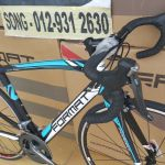 FULL CARBON frame and fork FREE delivery