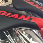 Giant SR saddle  (free pos w.m)