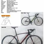 700c TRS RIPLEY alloy Road Bike Bicycle  (16 speed)