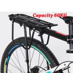Bicycle Rear Rack With Arm Support