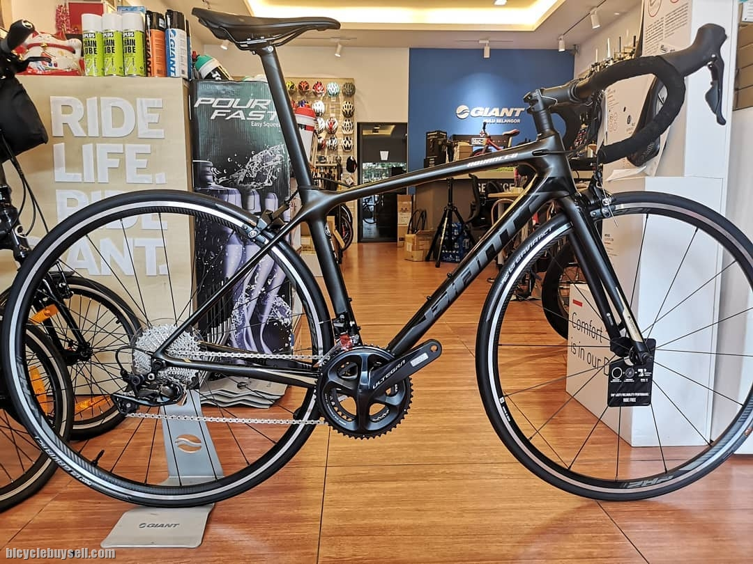 Giant 2019 TCR Advanced 1