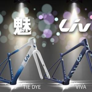 2021 LIV  Advanced Avail Disc Ultegra Di2 Limited edition